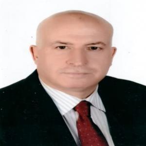 Mohammad Naser Salim Alzoubi