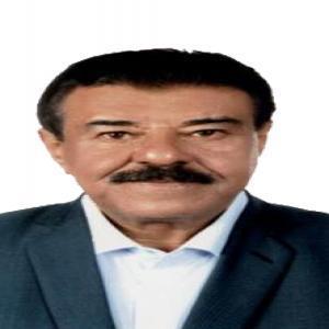 محمد ضيف الله سليمان الفلاحات