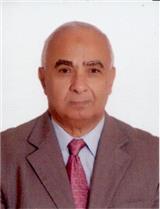 محمد احمد حمدان